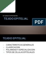 CLASE 02 - EPITELIO