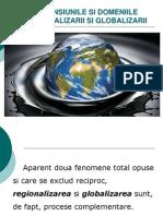 Dimensiunile Si Domeniile Regionalizarii Si Globalizarii