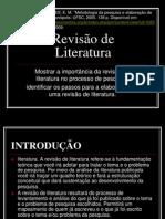 revisao_literatura