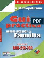 Guia Practica Sobre Nuevos Juzgados de Familia
