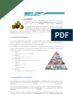 Qué Es La Pirámide de Los Alimentos