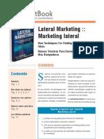 45164283 Resumen Marketing Lateral