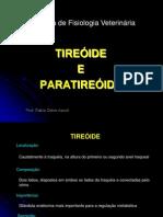Tiróide e Paratiróide