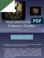 Presentacion Vascularización de Cabeza y Cuello