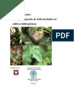 Fao - Manual Tecnico - Manejo Integrado de Enfermedades en Cultivos Hidroponicos - Parte 1