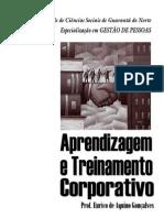 FCSGN - GESTÃO DE PESSOAS - Aprendizagem e Treinamento Corporativo - Prof Eurico - apostila