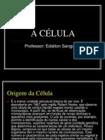 A+CÉLULA (2)