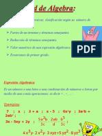 Algebra 6to Basico