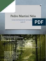 Pedro Martini Néia chonps1