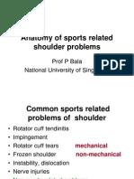 Anatomy of Shoulder Sport