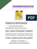 Enfermedades Virales en La Ciudad Del Cusco