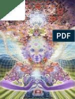 Alex.grey Complete.masterworks 420ebooks