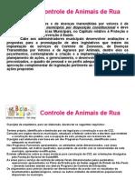 apresentação centro de controle de animais