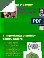 Importanta plantelor