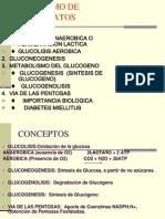 4 Metabolismo de Carbohidratos Medicina