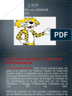 Presentacion Oficial Sistema Riesgos Profesionales.pptx Verdadero