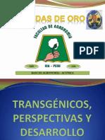 TRANSGÉNICOS, PERSPECTIVAS Y DESARROLLO
