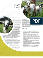 Keeping Goats in SD (2)