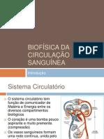 Biofísica da circulação sanguínea