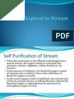 Waste Disposal in Stream