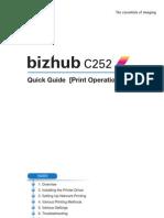 c252 Quick Manual