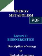 Bioenergetics_1