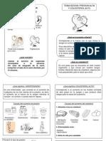 Diptico de HAT y Dislipidemia Ppoint
