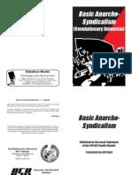 Basic Anarcho-Syndicalism (Revolutionary Unionism)