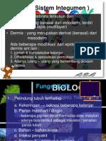 Sistem Integumen Biologi Dasar , Kelompok 8