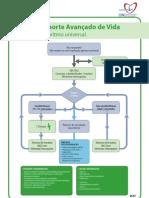 Poster SAV Adulto