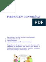 Purificación+de+proteínas