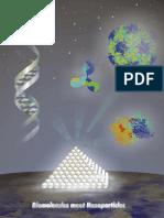 Biomolecules meet Nanoparticles