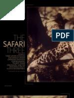 The Safari Three