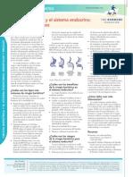 Cirugia Bariatrica (Para Obesidad) y El Sistema Endocrino Riesgos y Beneficios