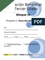 3er Grado - Bloque 4 - Español