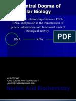 5. Nucleic Acid