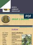 Group 2 (Durian) Final Edit