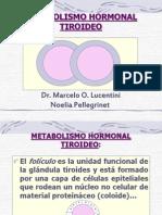 metabtiroideo (1)