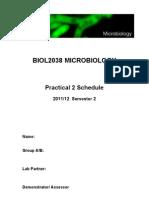 BIOL2038 Practical 2
