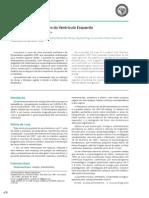 9402025 Fibroelastoma Papilífero do Ventrículo Esquerdo