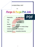Forge & Forg Project Report-Prince Dudhatra