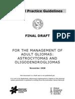 Brain Tumour Guidelines Final Draft Nov2008