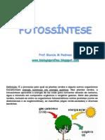 Fotossíntese Bioquímica