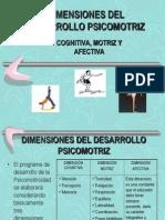Dimensiones Del Desarrollo Psicomotriz