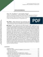 Stem Cell Bio Engineering