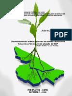 Desenvolvimento e Meio Ambiente na fronteira trinacional_Dissertação MECO - Jesus