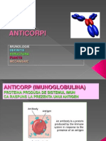 Anticorpi-Imunologie