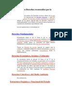 Estructura de los Derechos reconocidos por la Constitución