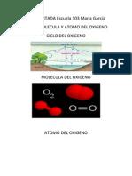 Portada Del Ciclo, Molecula y Atomo Del Oxigeno