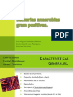 Bacterias Anaerobias Gram Positivas Clostridium
